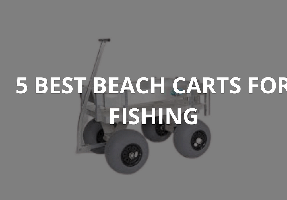 5 Best Beach Carts For Fishing