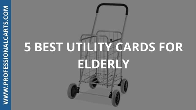 ProfessionalCarts - 5 Best Utility Carts for Elderly