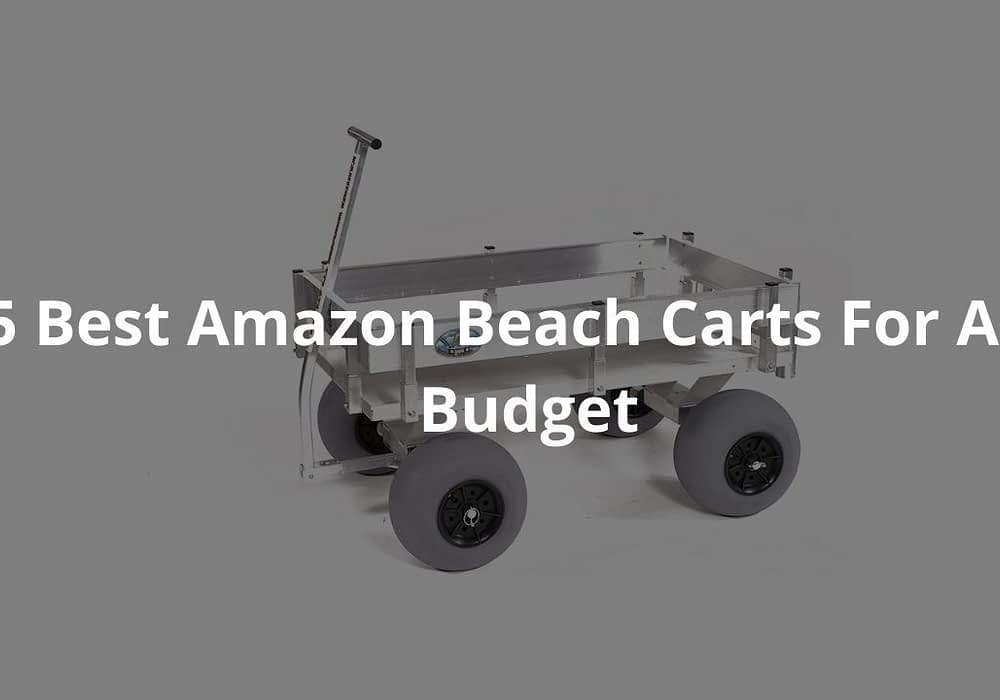 5 Best Amazon Beach Carts For Any Budget