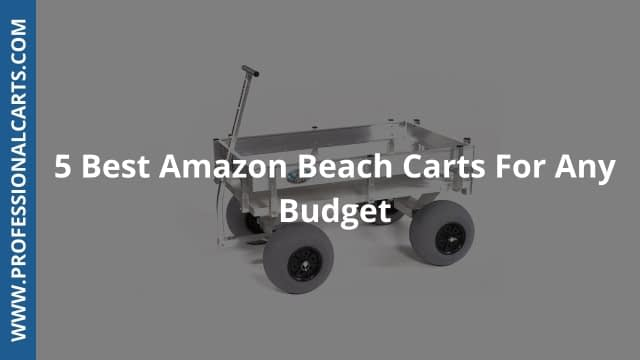 ProfessionalCarts -5 Best Amazon Beach Carts For Any Budget