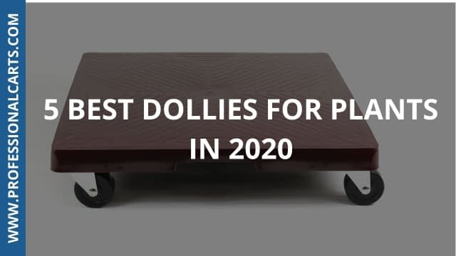 ProfessionalCarts - 5 Best Dollies For Plants In 2020